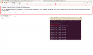 Screenshot of Node.js running Web Socket Server on Ubuntu